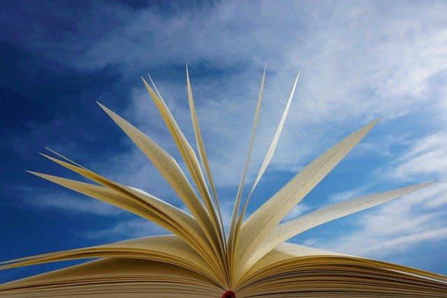 Libro aperto con le pagine aperte